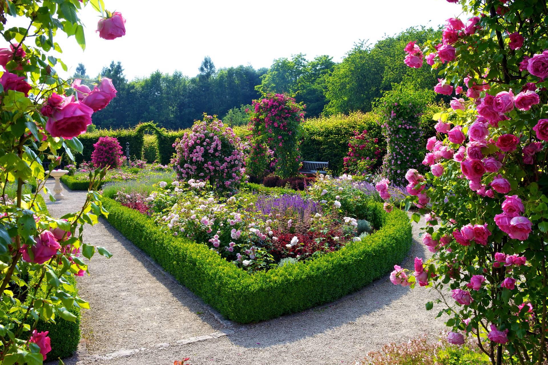 Wallpaper download garden - Flower Garden Wallpapers Best Wallpapers Download