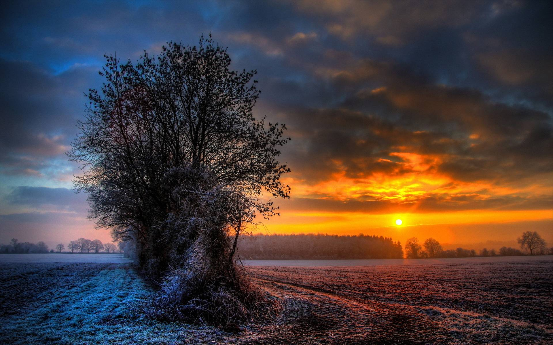 Free Sunset Screensavers And Wallpaper: Winter Sunset Wallpapers