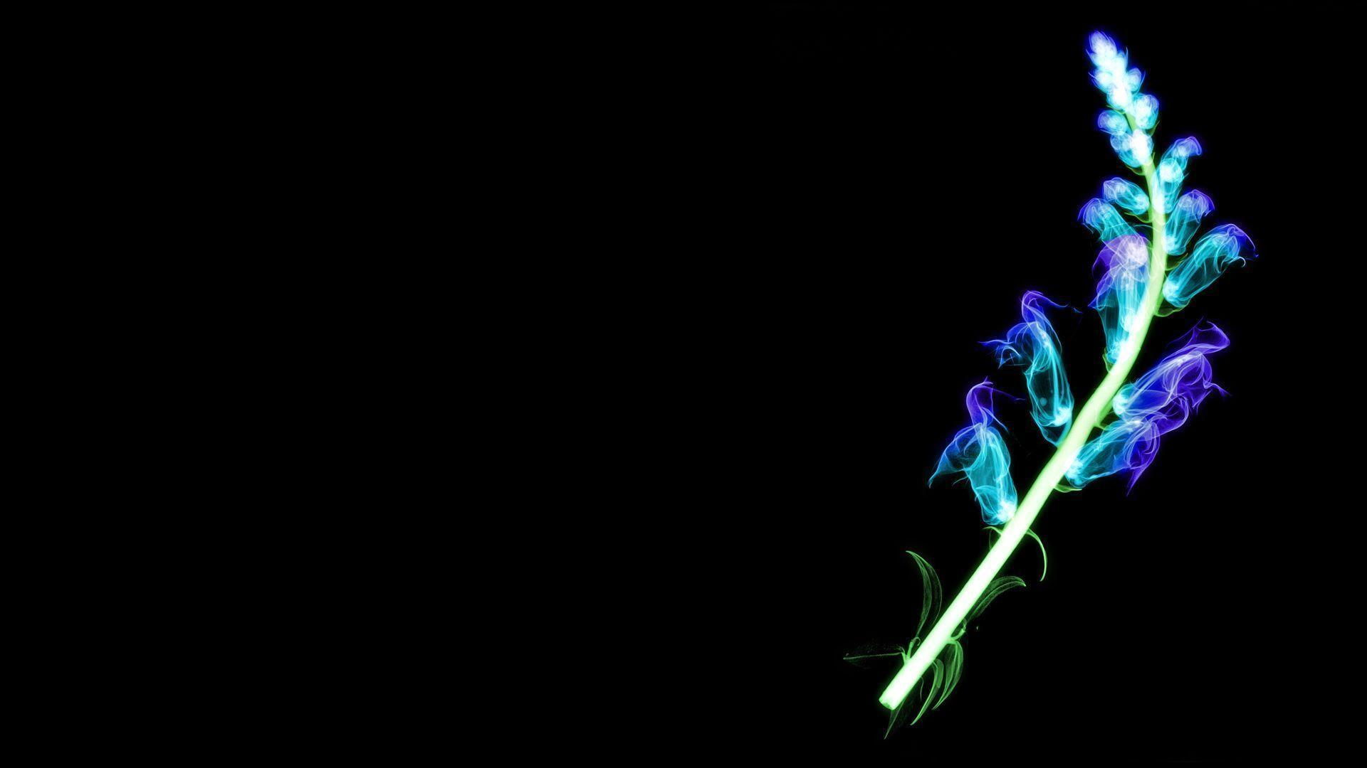 hd neon wallpapers - photo #21