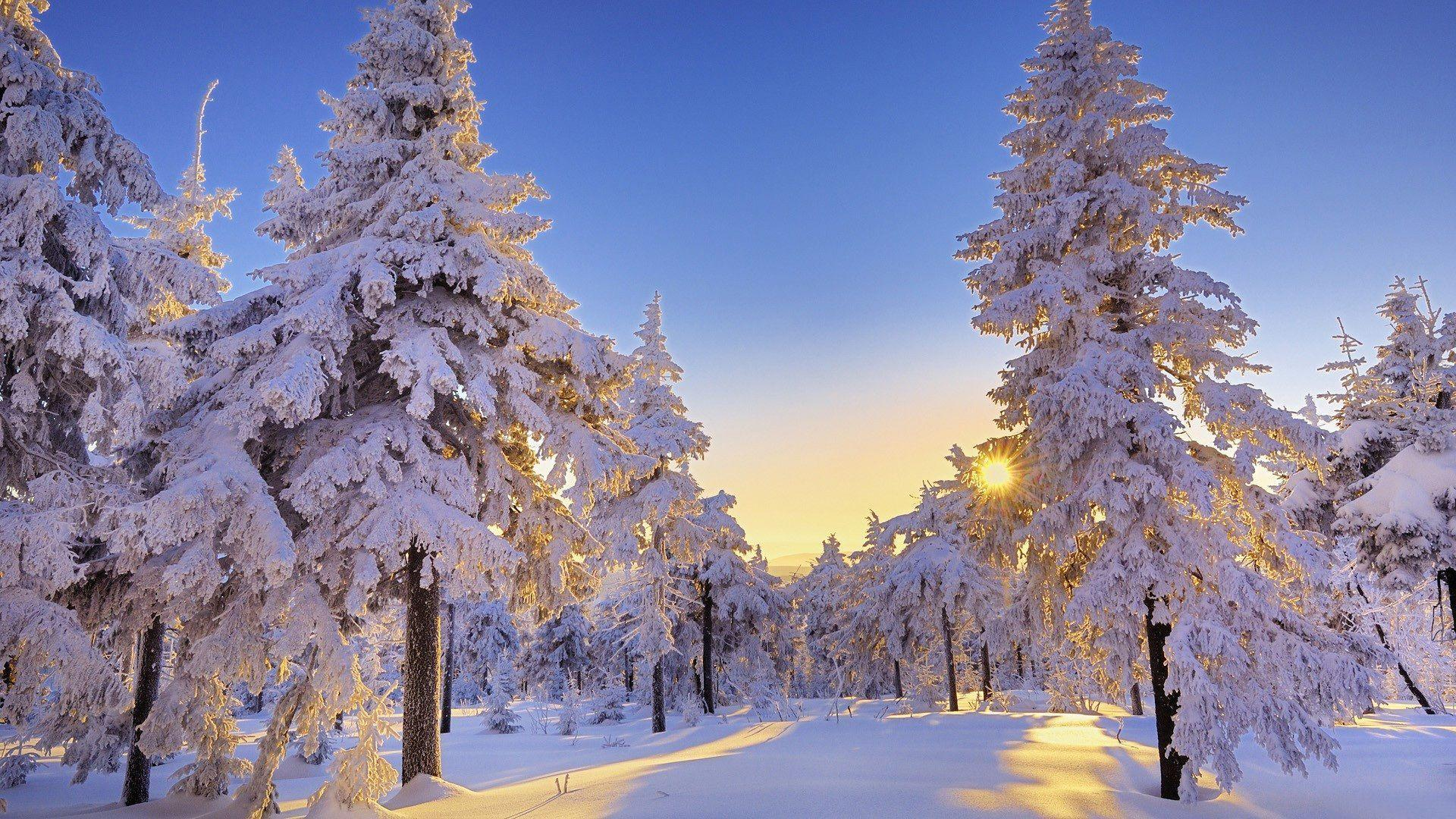 Winter Wallpaper HD 10486 1920x1080 px ~ FreeWallSource.