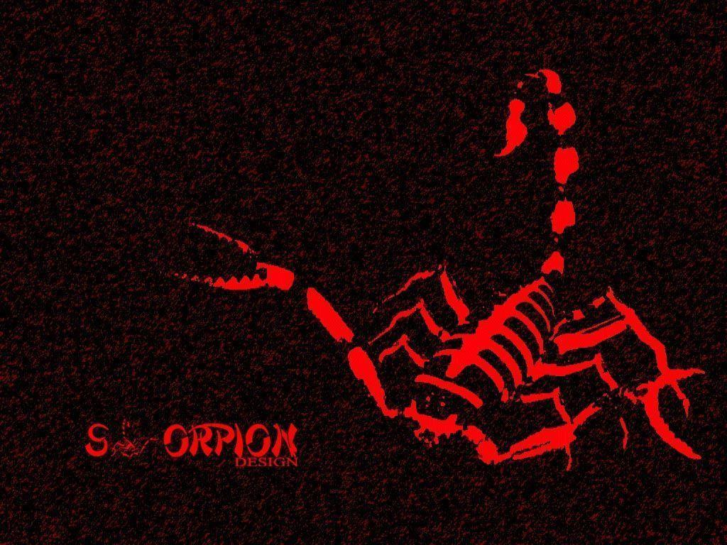 Red scorpion wallpaper - photo#4