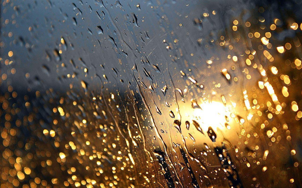 rain wallpapers