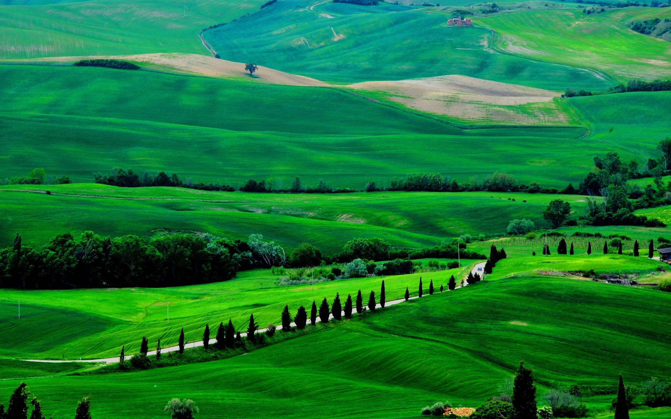 Fields trees italy road Tuscany wallpapers