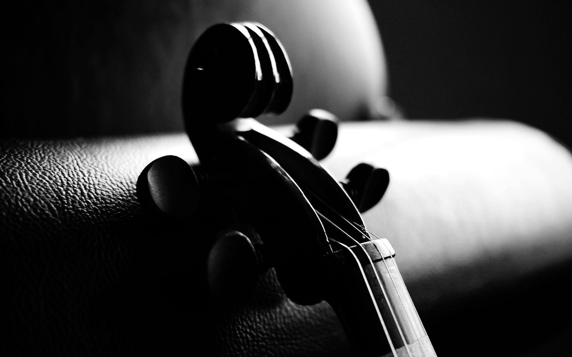 Violin Is An Instrument Wallpaper HD 8715 #3135 Wallpaper | High ...