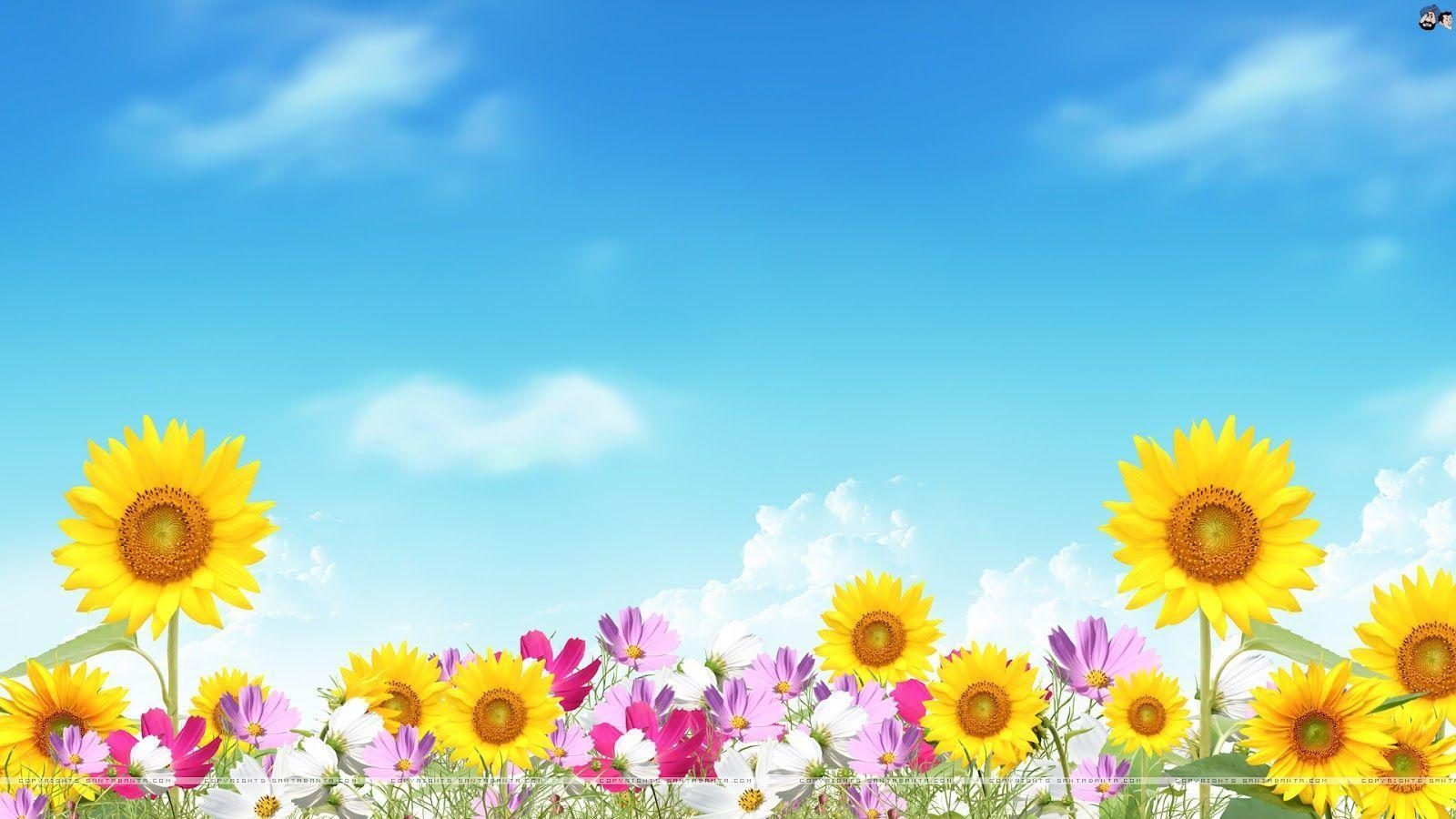 Free Summer Wallpapers For Desktop - Wallpaper Cave