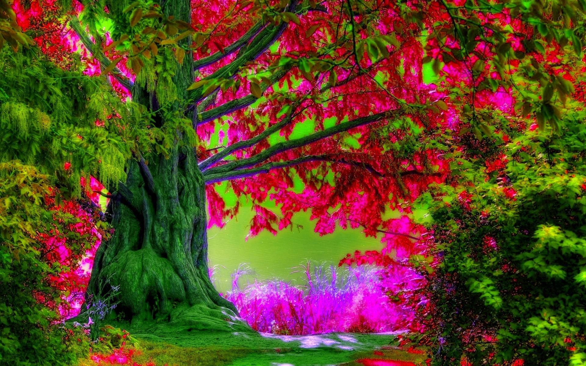 spring trees background - photo #7