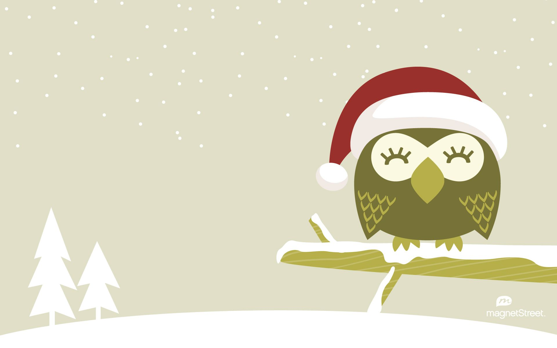 Wallpaper white winter wildlife Canada bird of prey owl