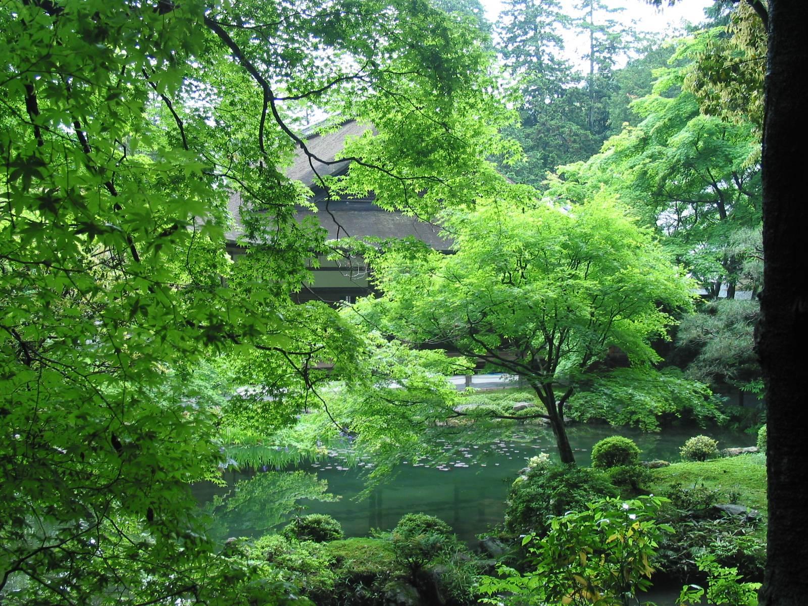 garden wallpaper zen 1920x1080px - photo #18