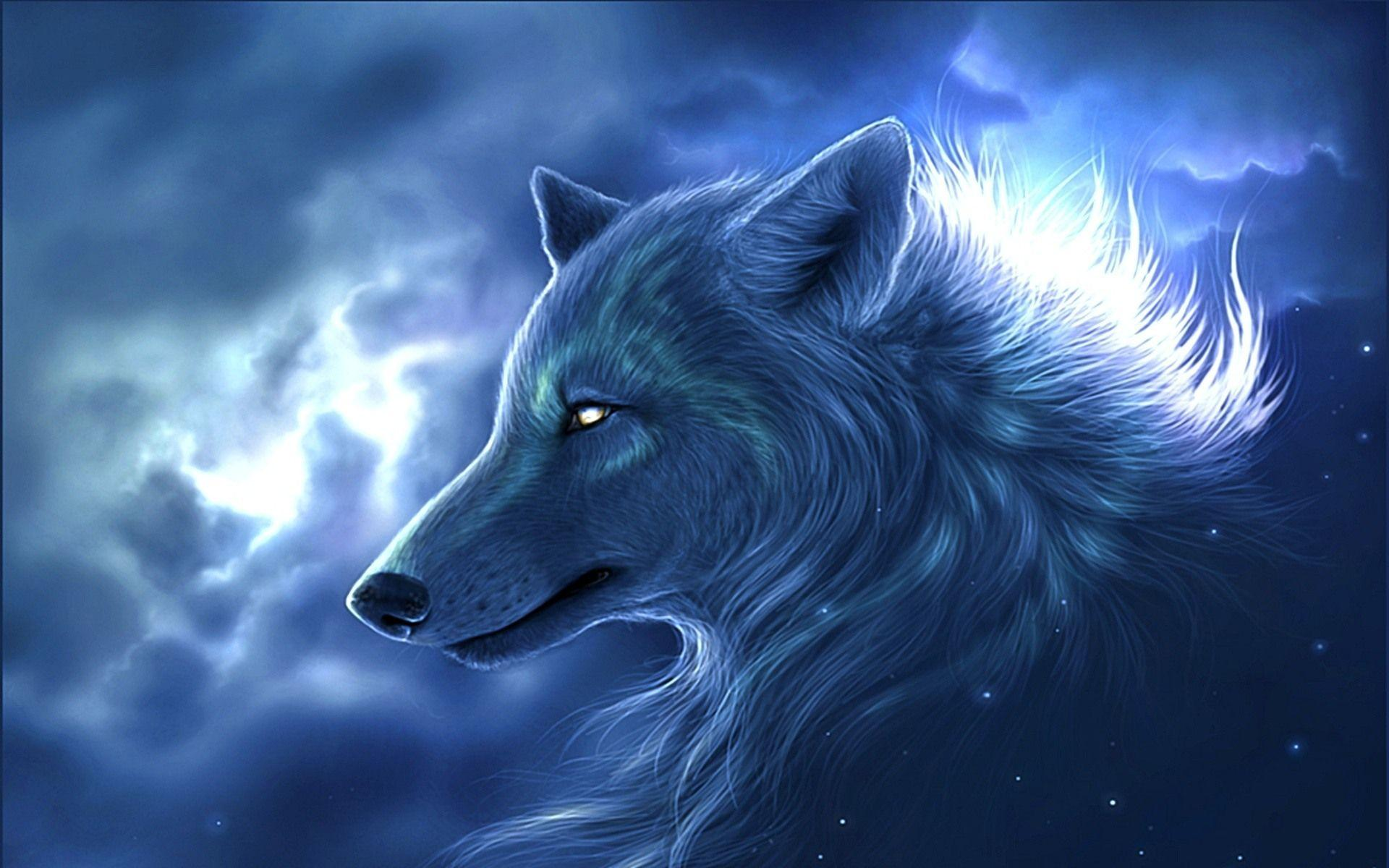 Hd wallpaper wolf - Wolf Wallpaper Wolf Wallpaper Part 2