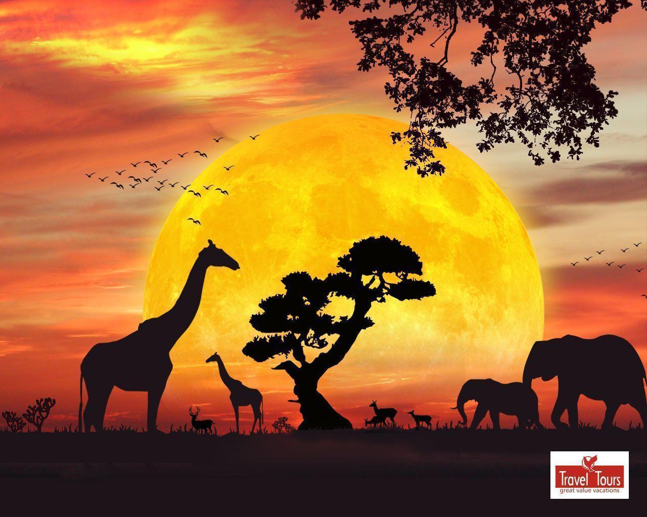 safari cartoon wallpaper - photo #17
