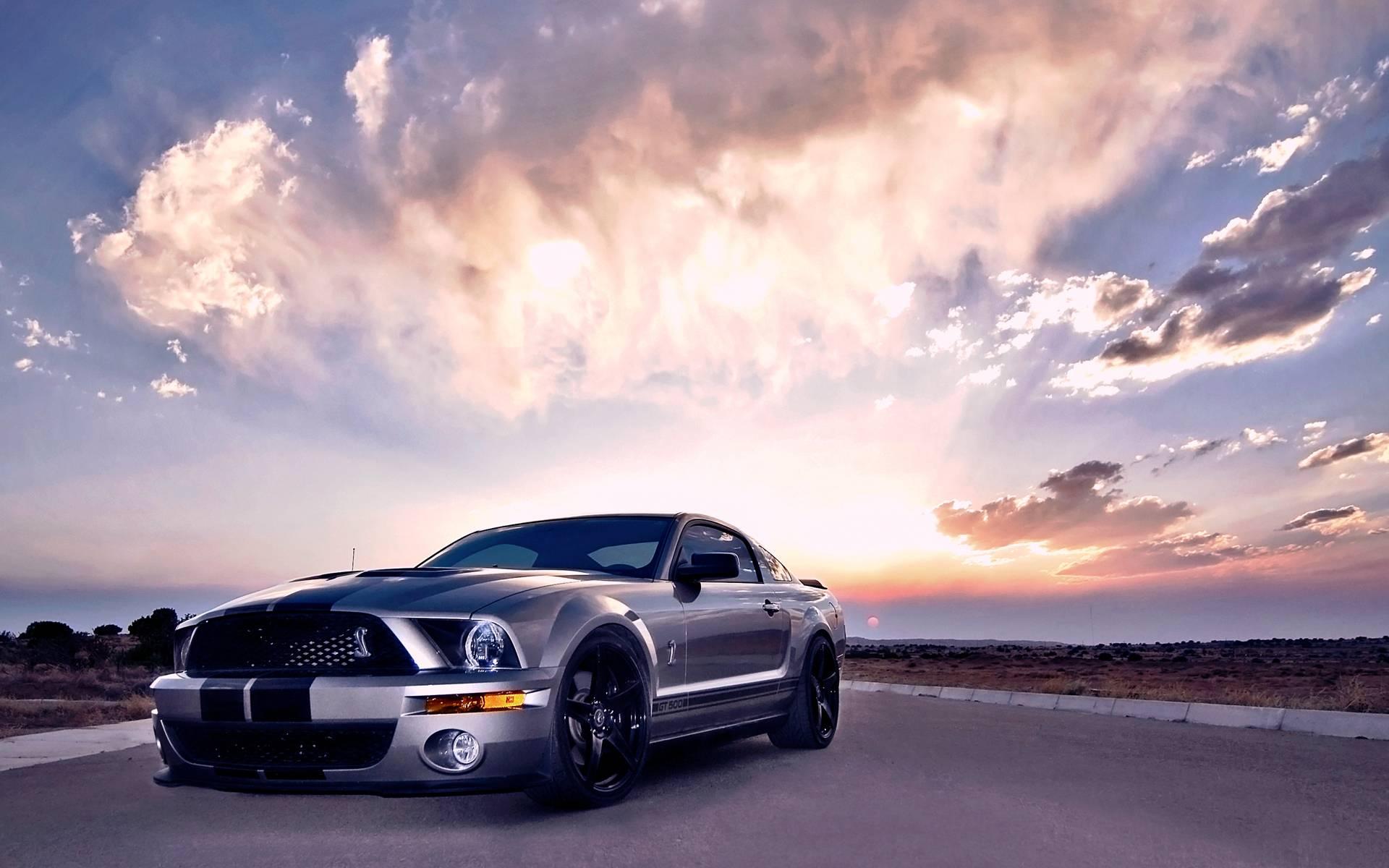 Mustang gt500 wallpapers wallpaper cave - Wallpaper mustang shelby gt500 ...