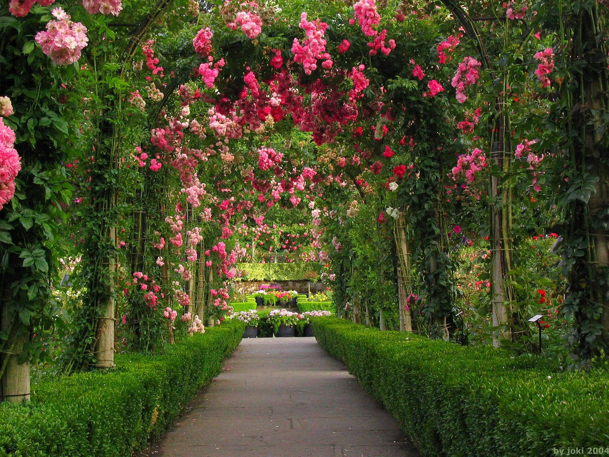Rose garden wallpapers wallpaper cave for Garden archway designs