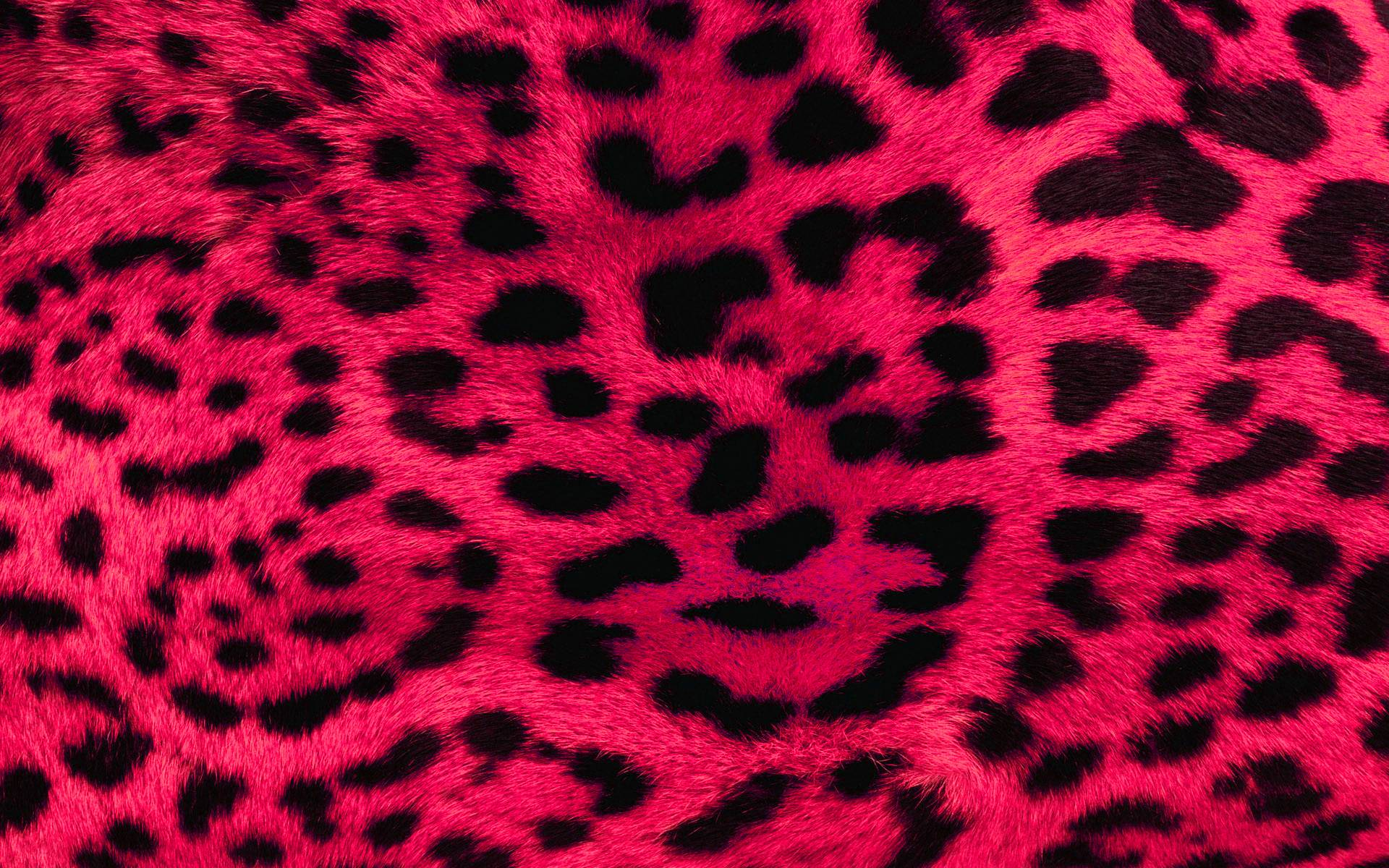 this animal print desktop - photo #8