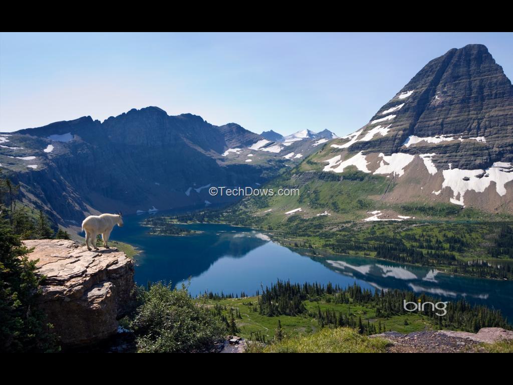 bing downloader wallpapers 64 bits - photo #23