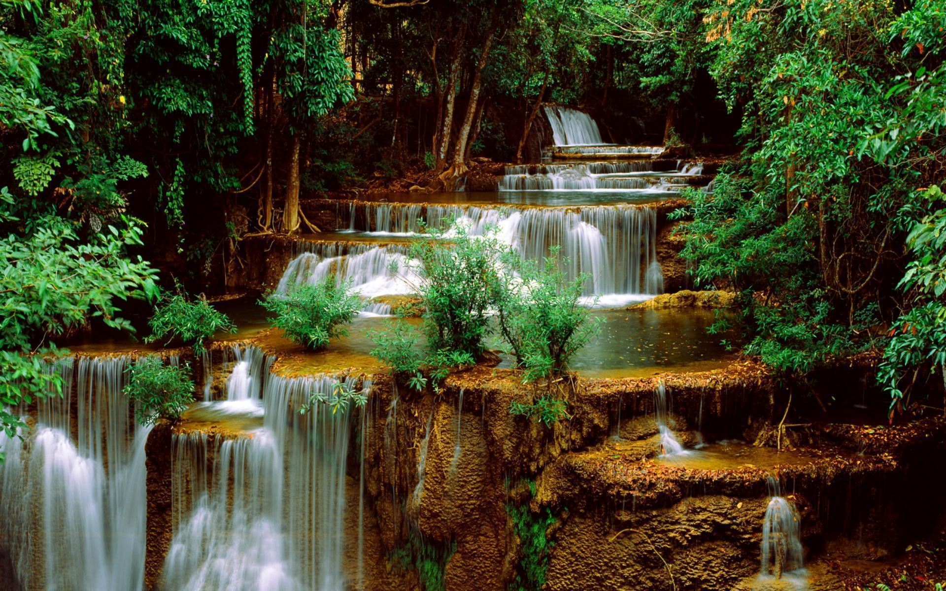 Forest <b>Waterfall Wallpaper</b> - WallpaperSafari