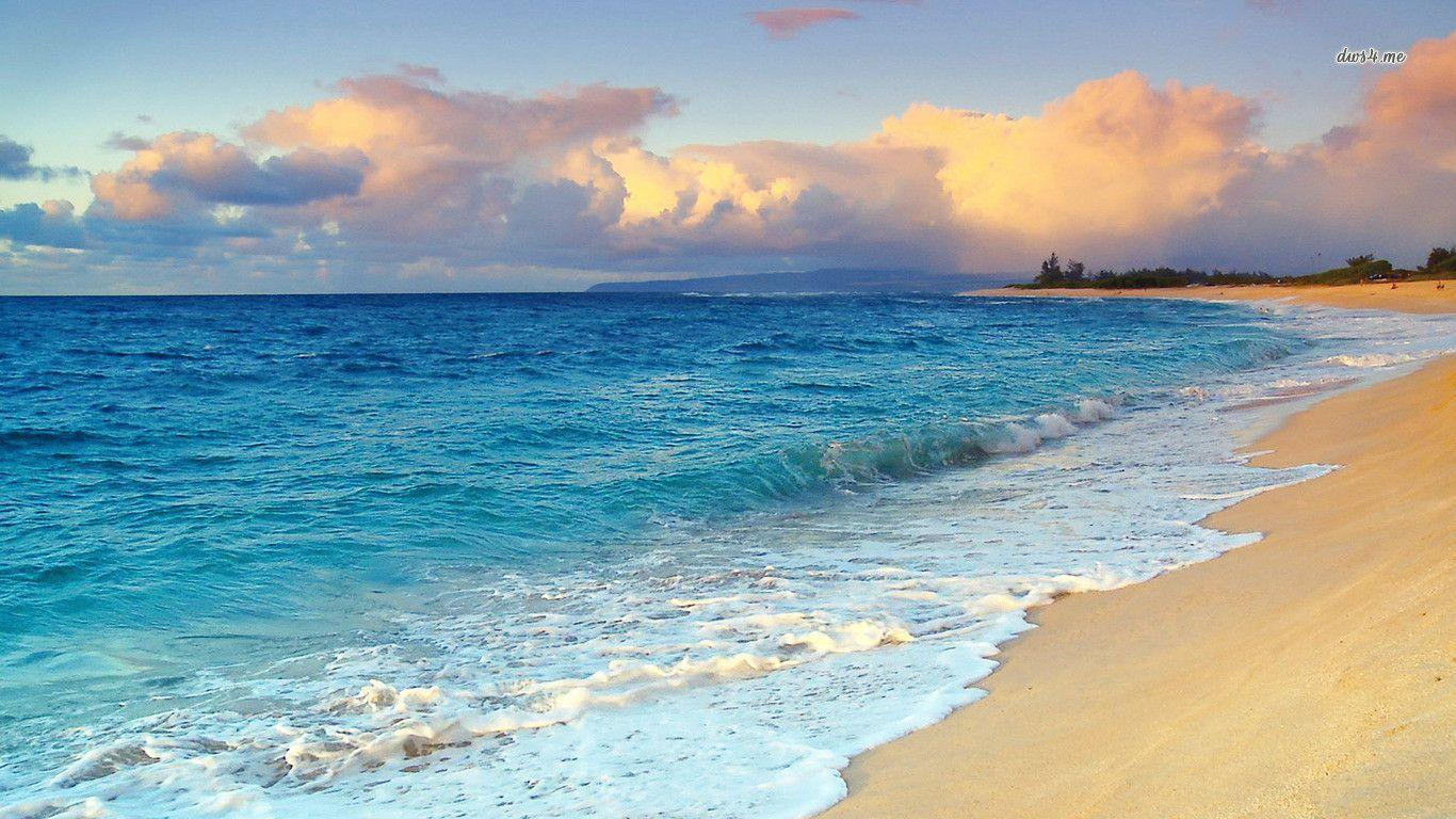 Beach in Hawaii wallpapers