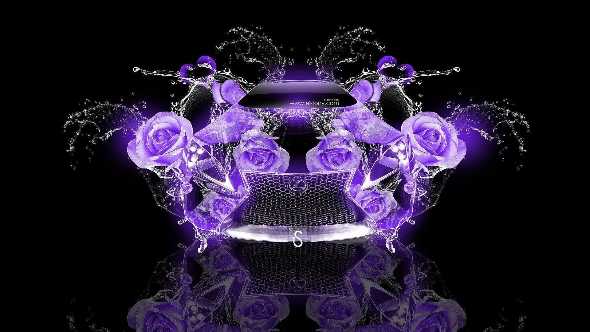 Violet Rose Wallpapers Wallpaper Cave