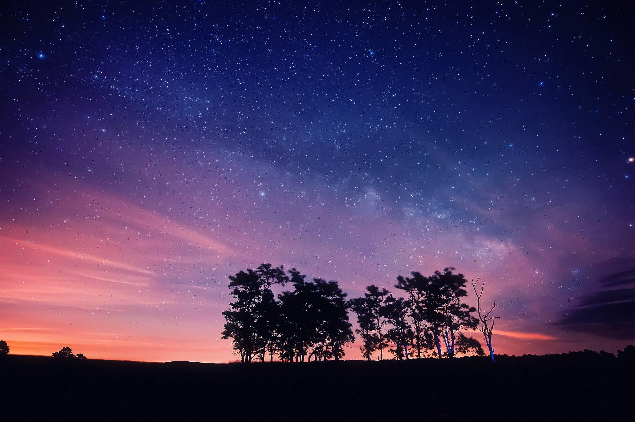 noch-nebo-zvezdy-derevya.jpg