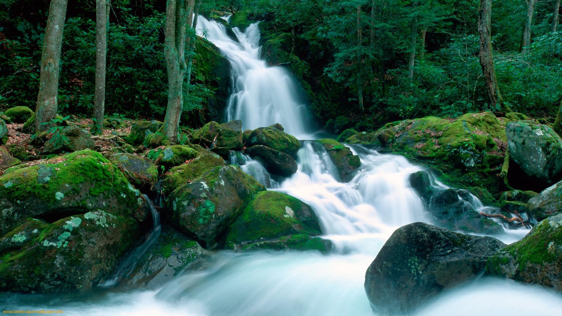 Beautiful waterfall wallpapers wallpaper cave for Waterfall environment