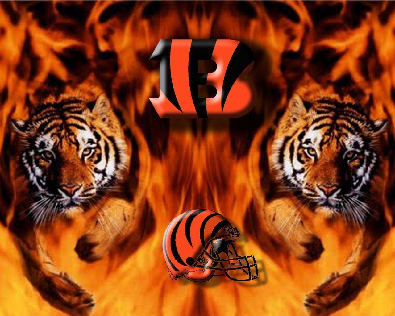Cincinnati Bengals Two Tigers Wallpaper Nfl 1280x1024PX ~ Bengals ...