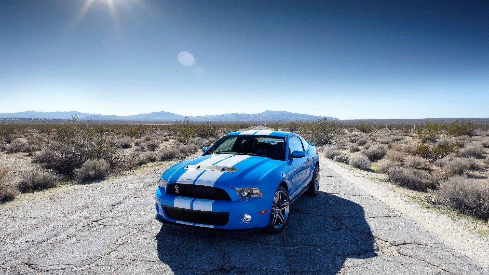 Cool Ford Mustang Sports Cars HD Wallpaper of Car ...
