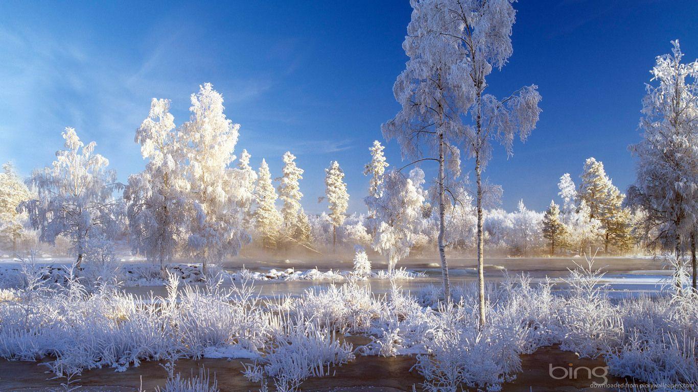 Winter Landscape Wallpapers