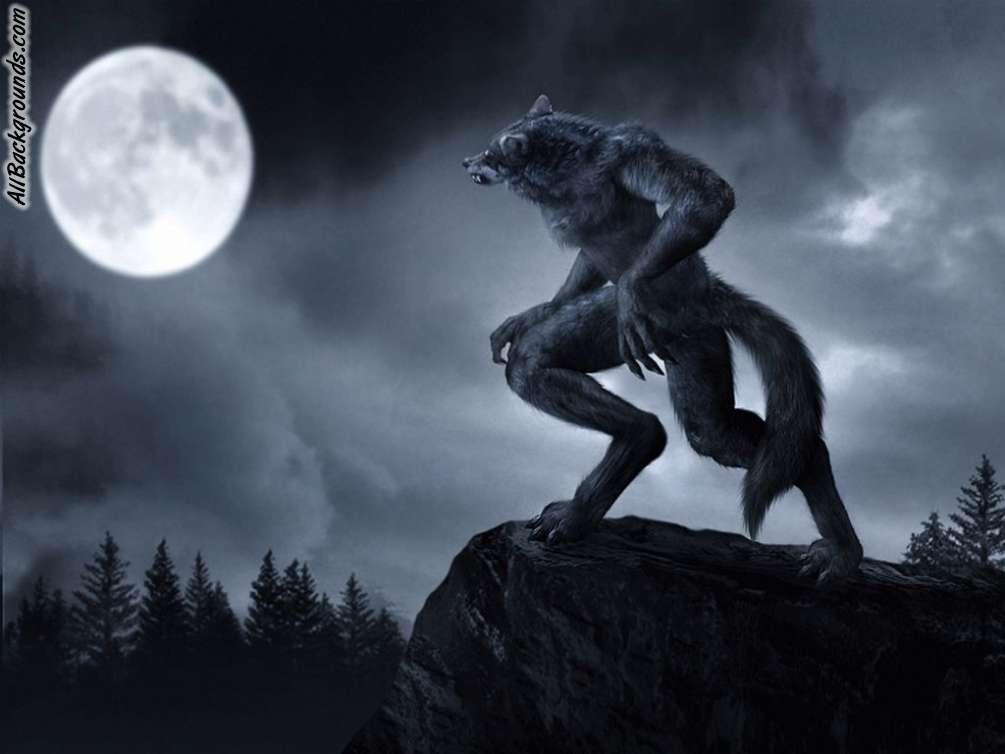Werewolf Backgrounds