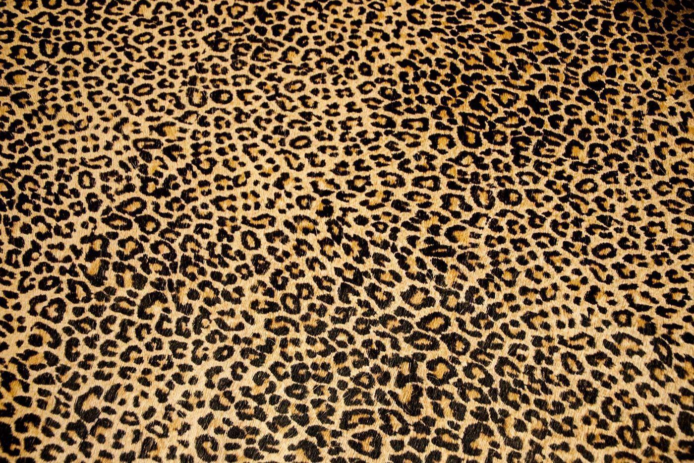 Картинка леопард фон
