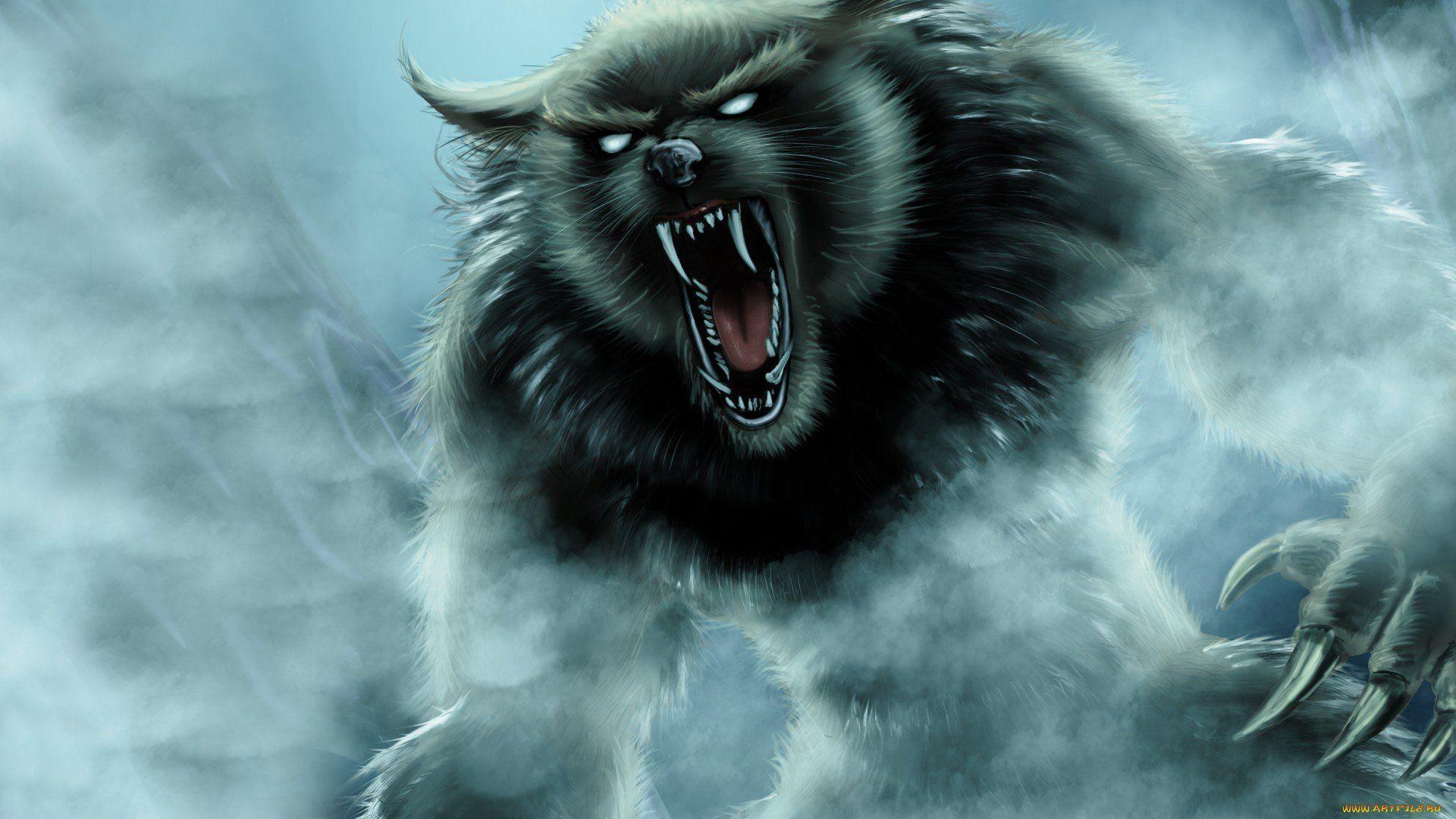 werewolf wallpapers wallpaper cave