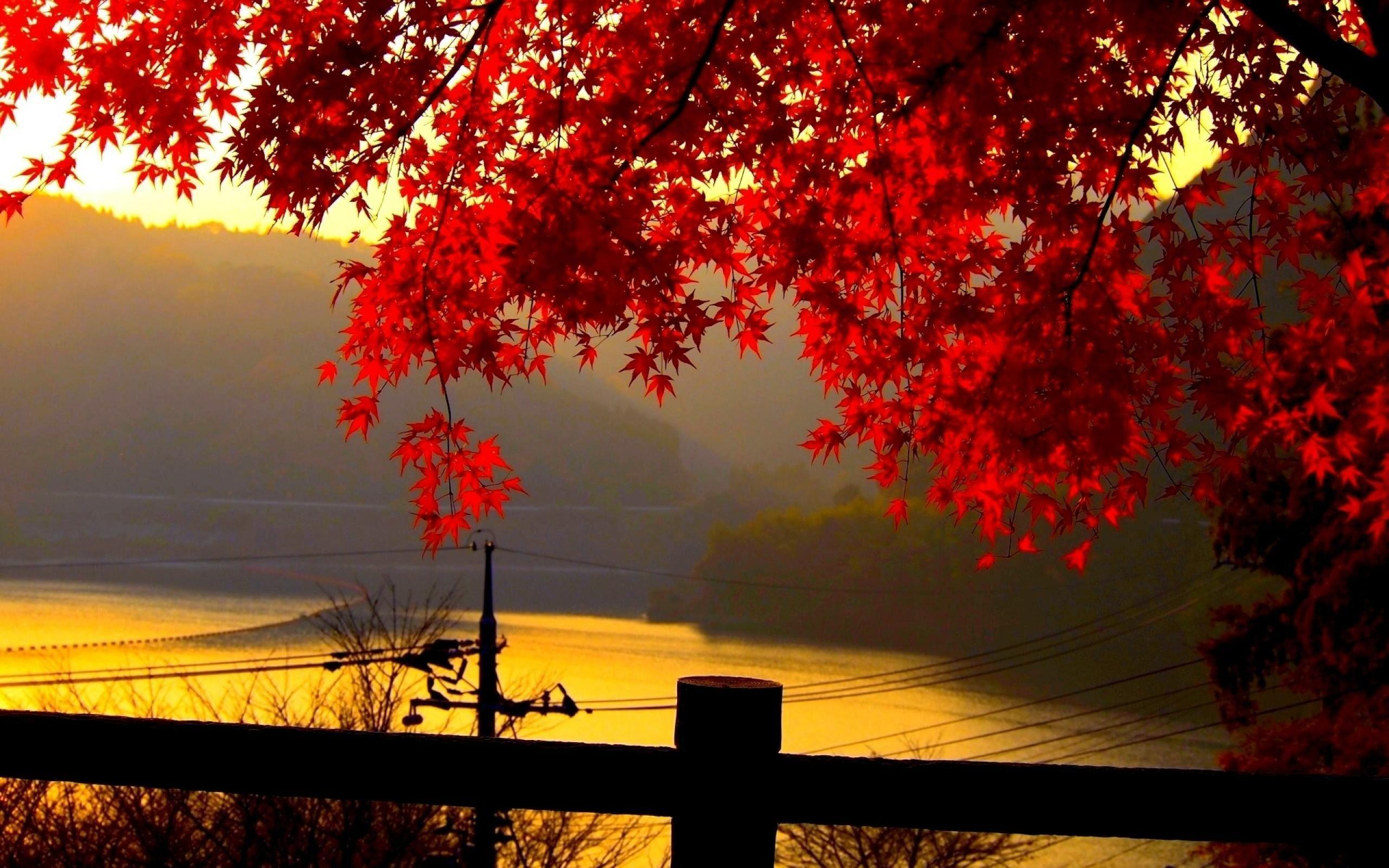 landscape autumn hd wallpaper - photo #2