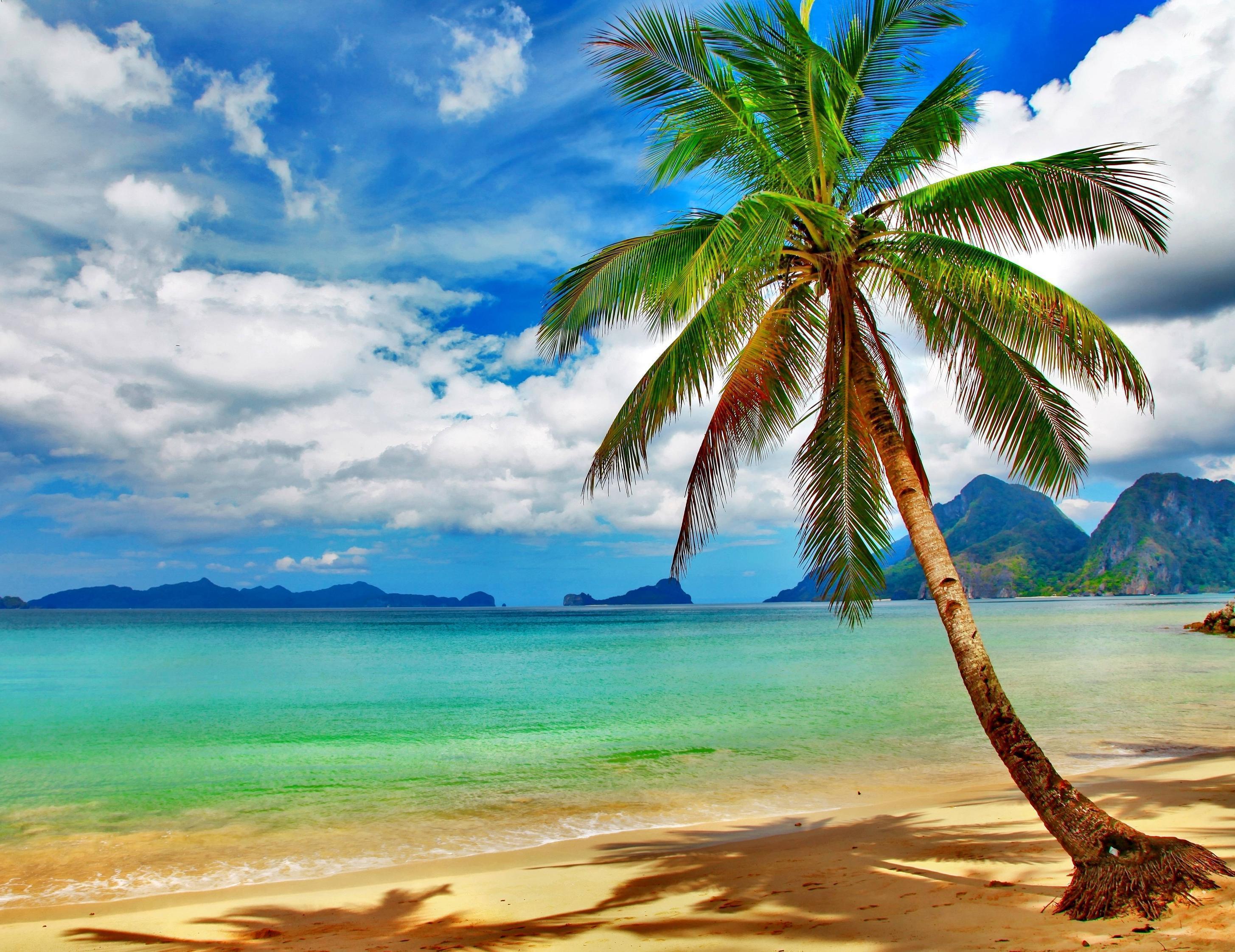 Tropical Beach Desktop Backgrounds