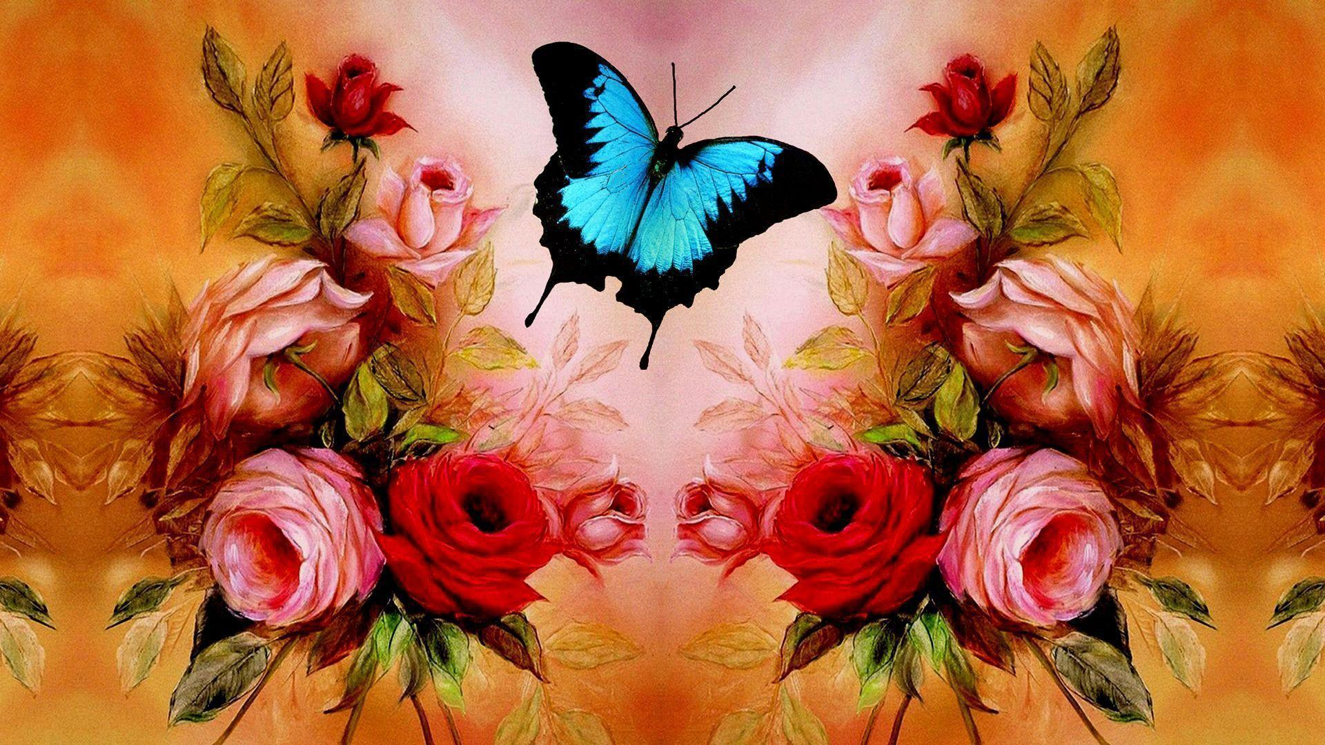 Valentine's day Wallpaper-Butterfly Roses Wallpapers