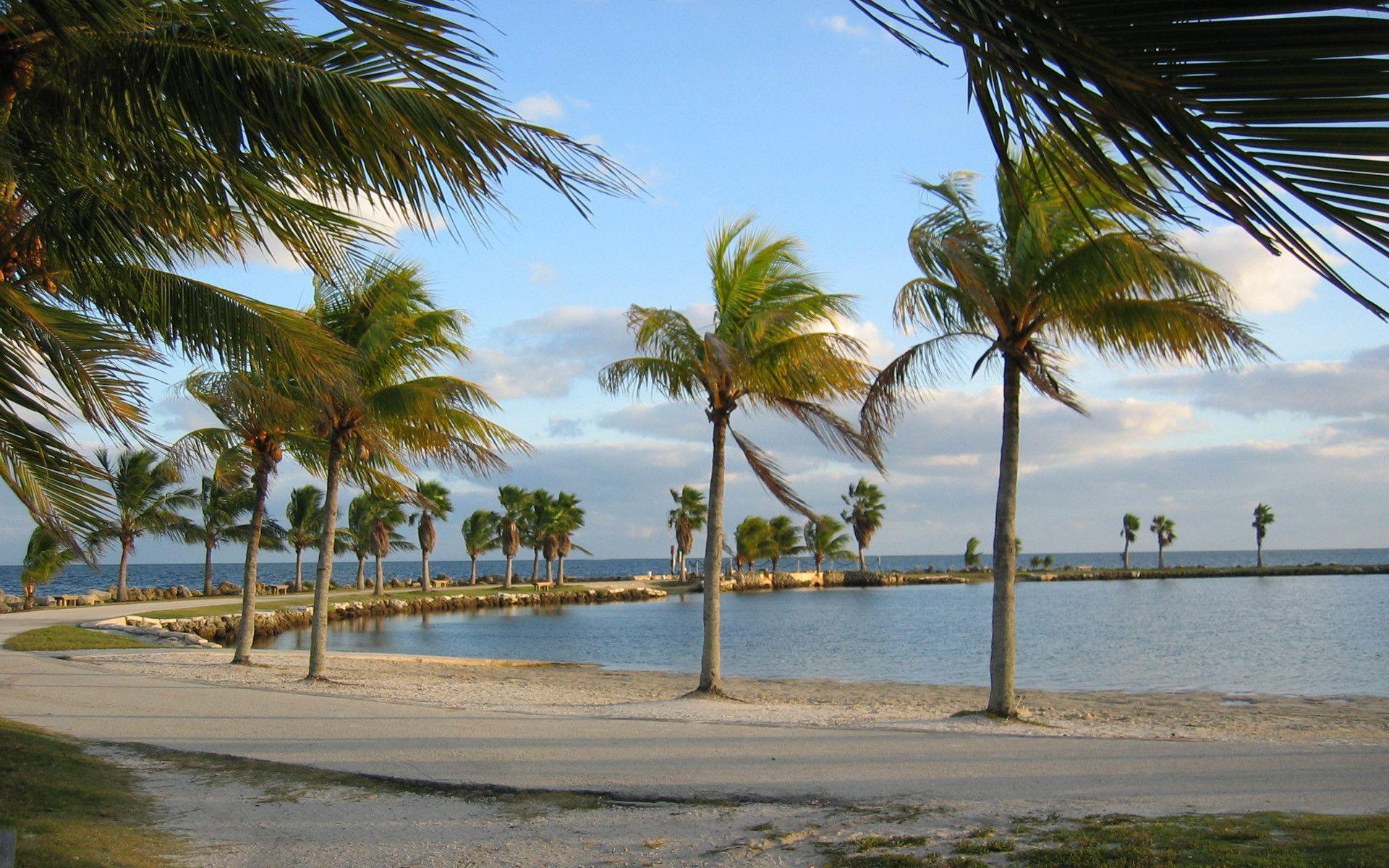 Free Activities South Beach Miami