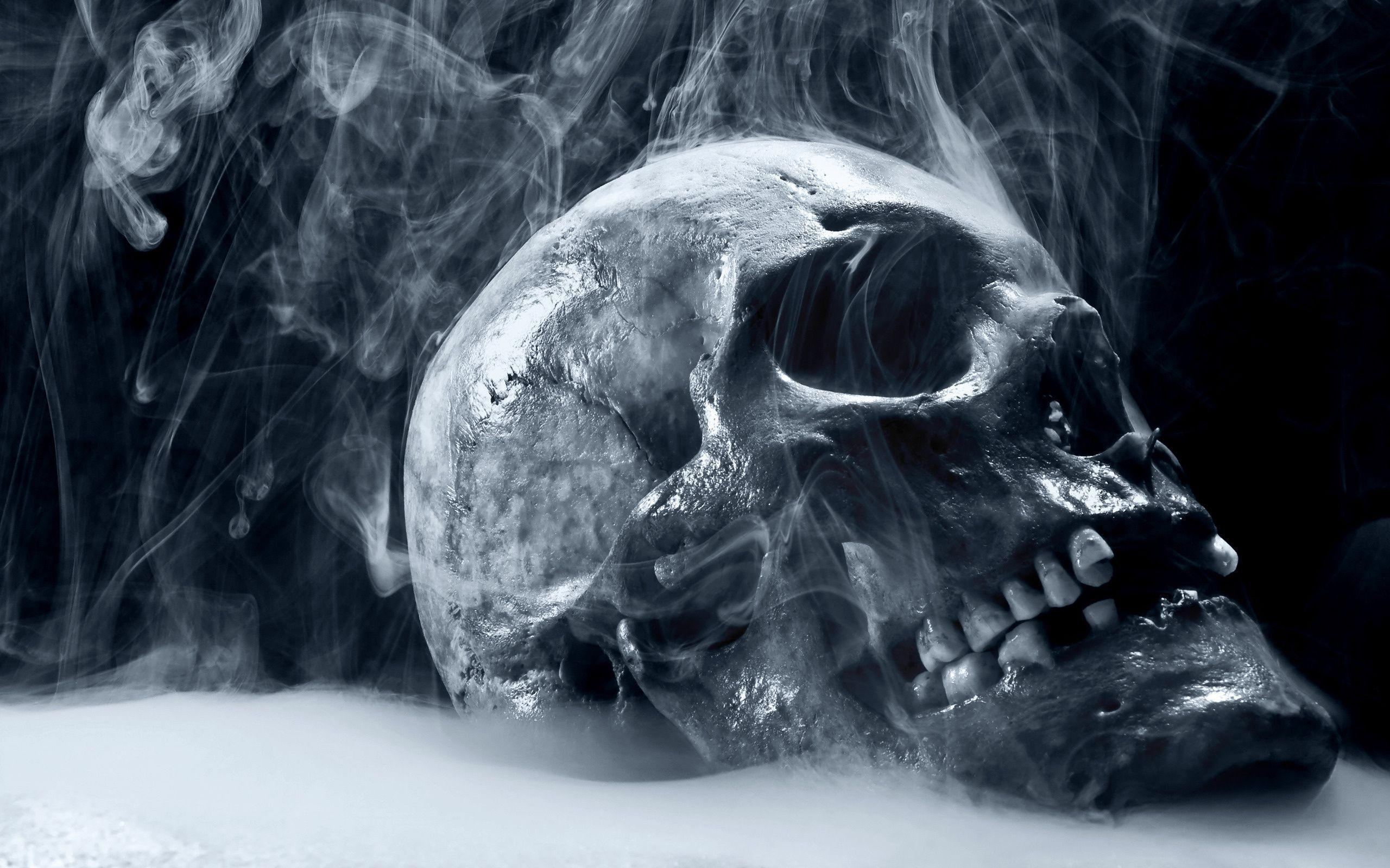 28+ Skull Wallpapers  PNG
