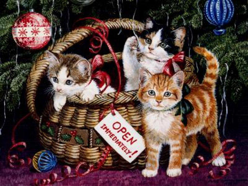 Kittens Wallpaper Christmas - Wild Animal Live