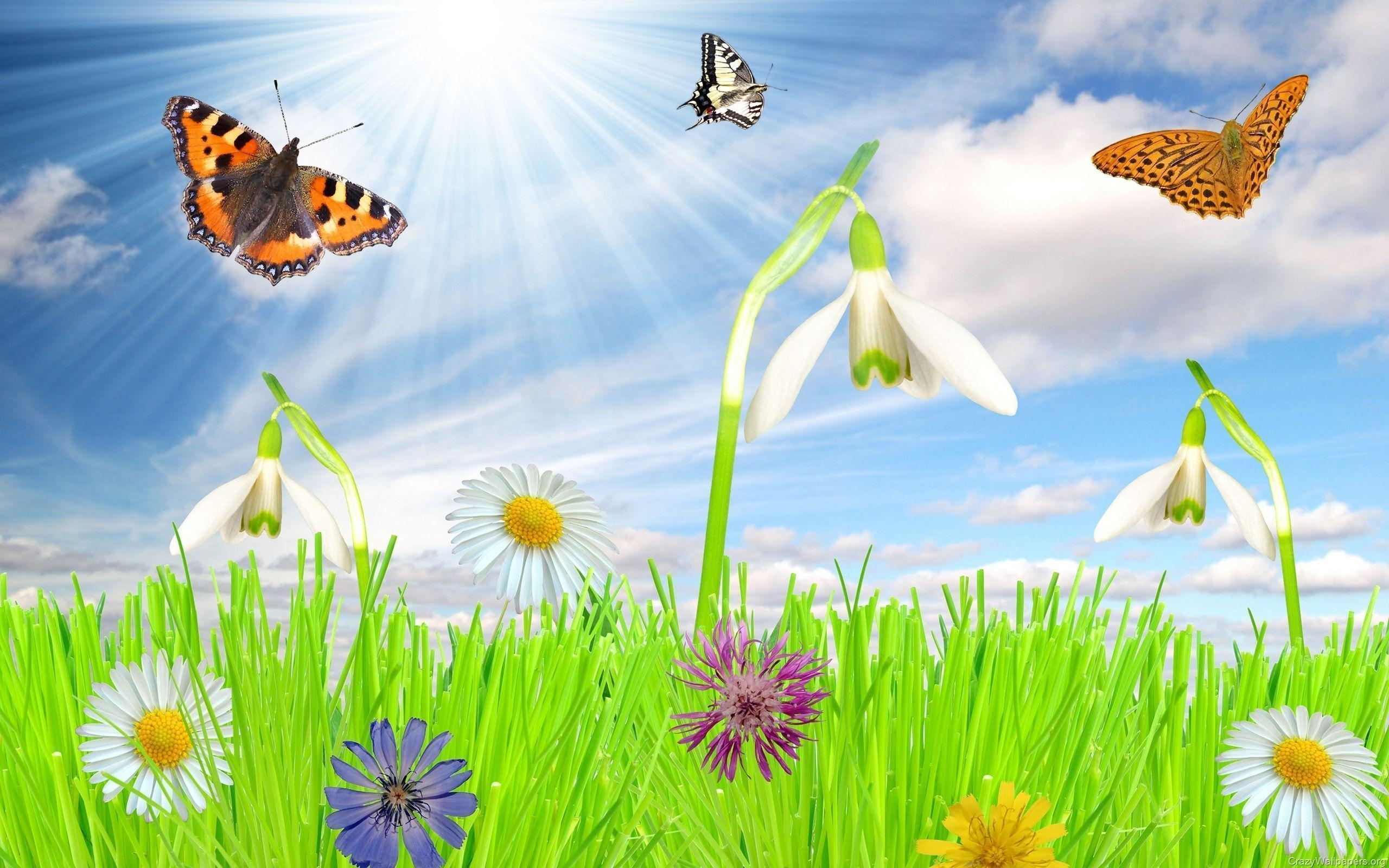 Free spring wallpapers and screensavers wallpaper cave for Wallpaper 2016 home