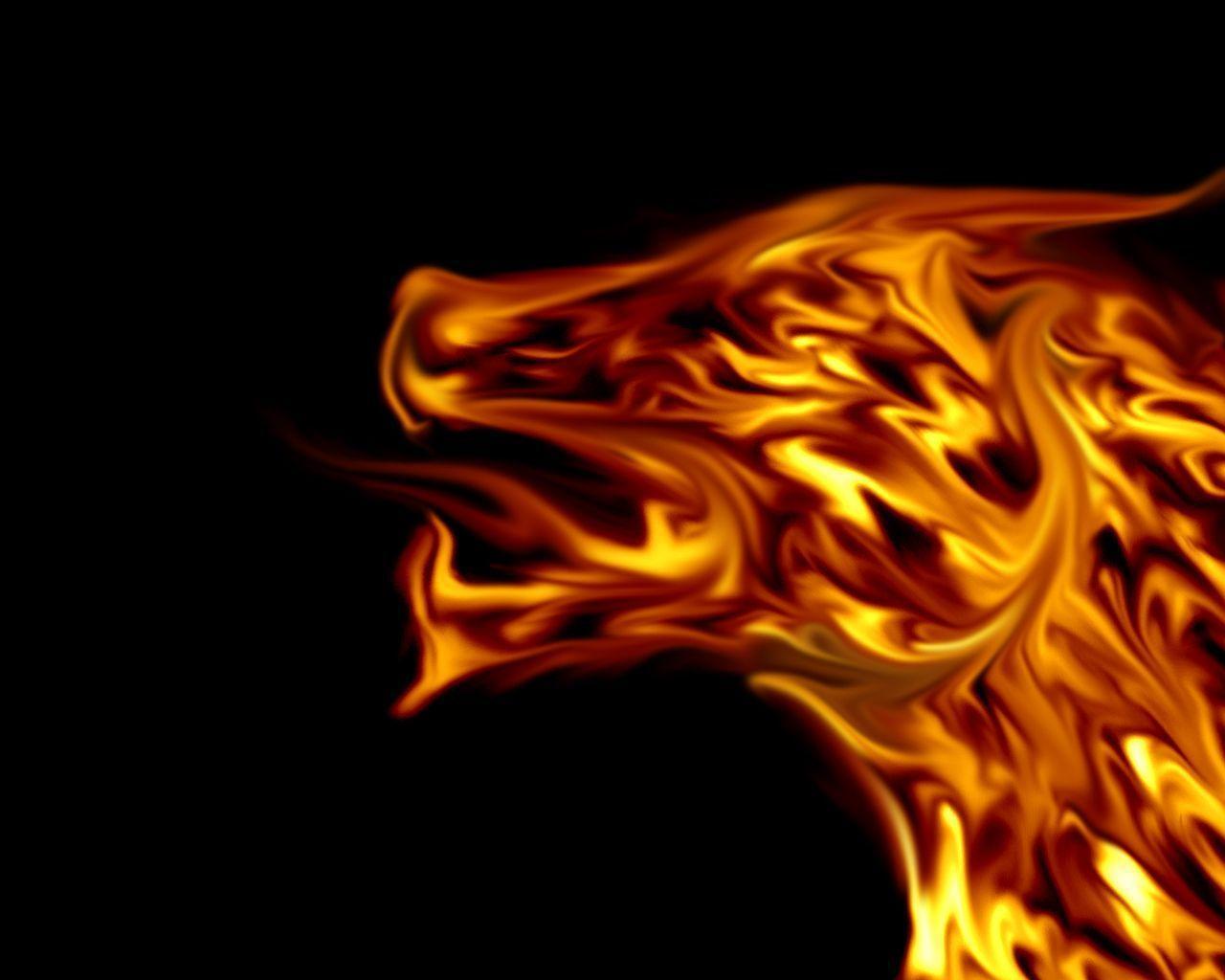 DREAM ZONE: Fire HD Wallpapers