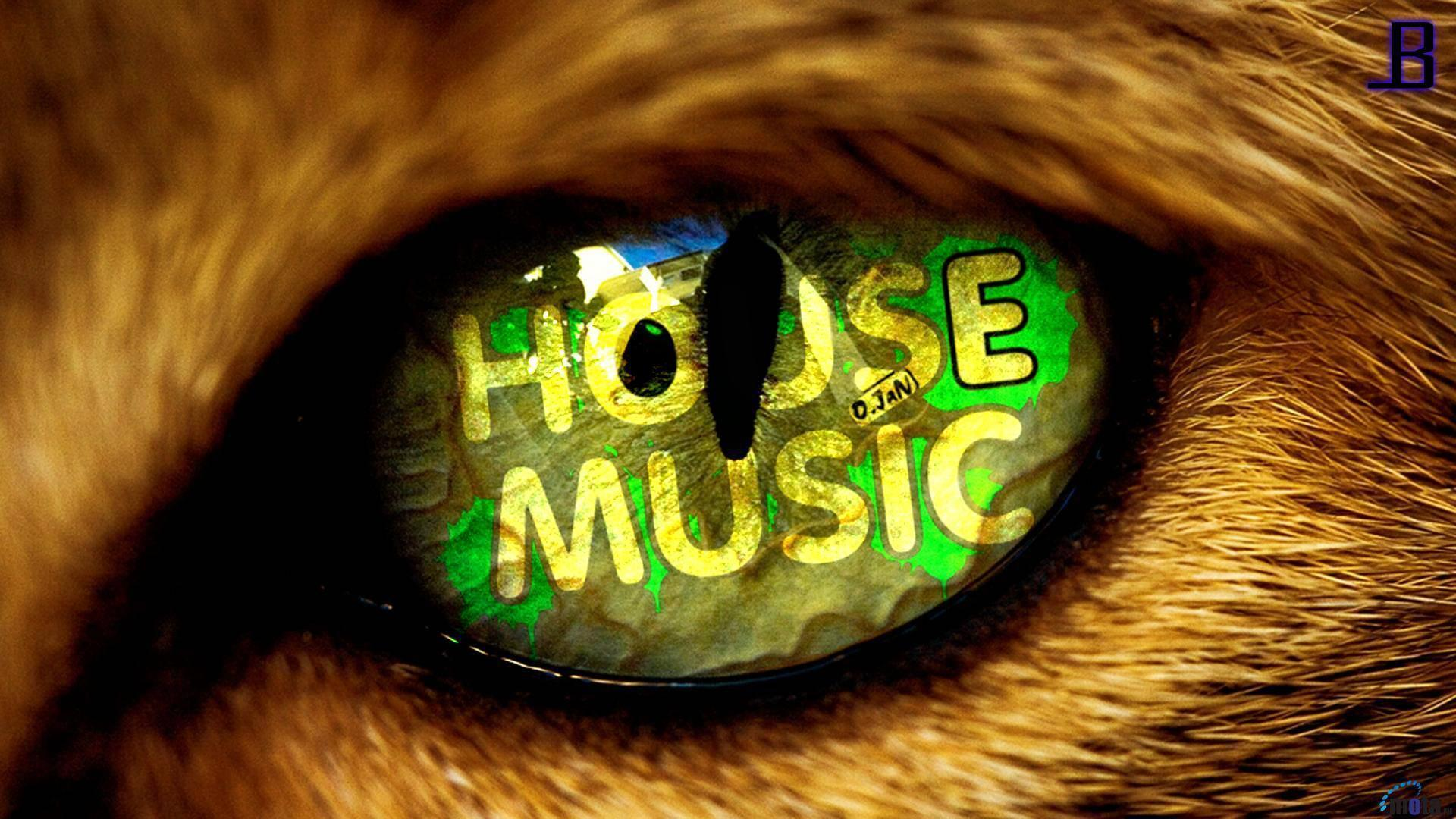 Music House Wallpapers Background 1 HD Wallpapers | aladdino.
