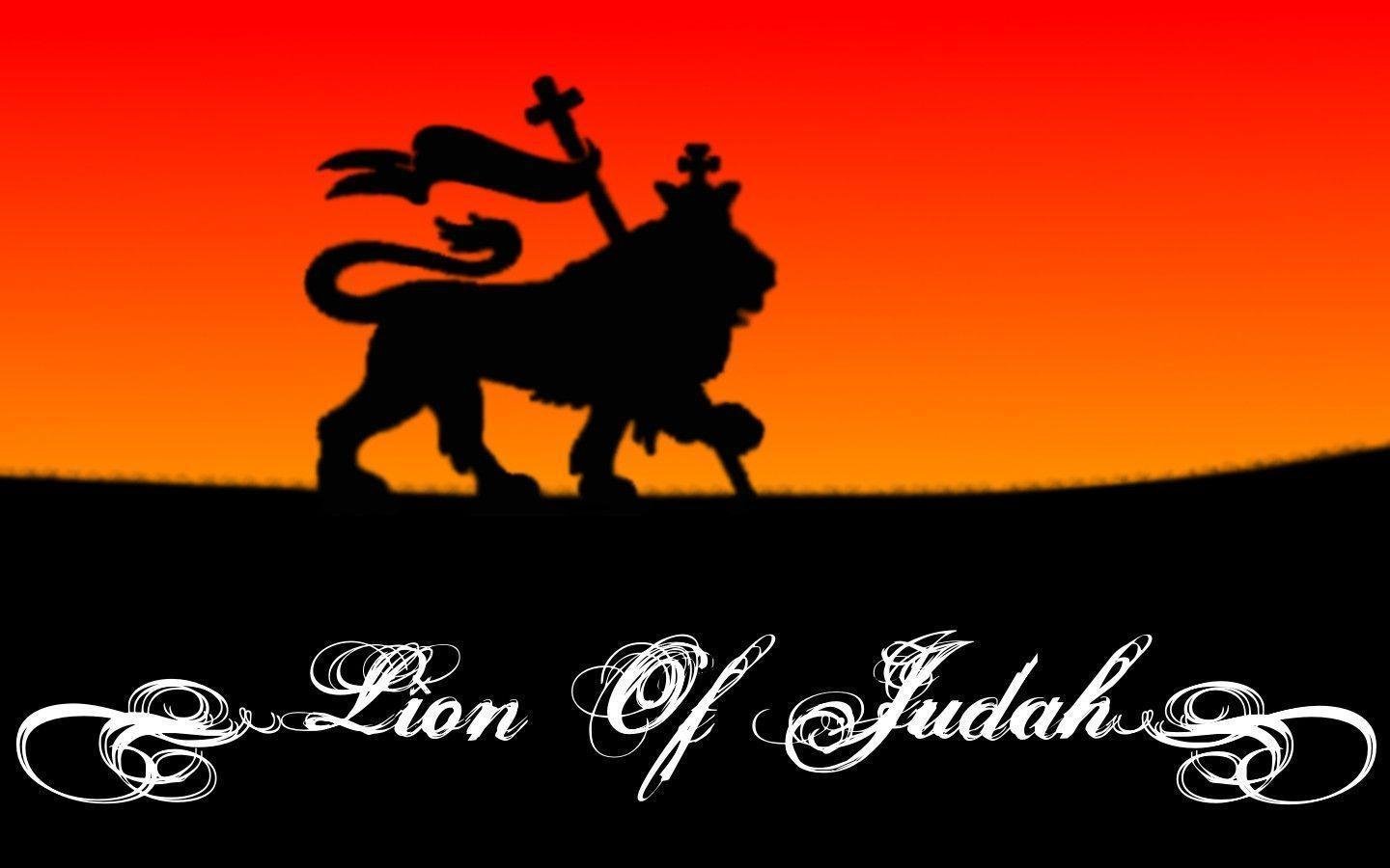 Image For > Lion Of Judah Vector