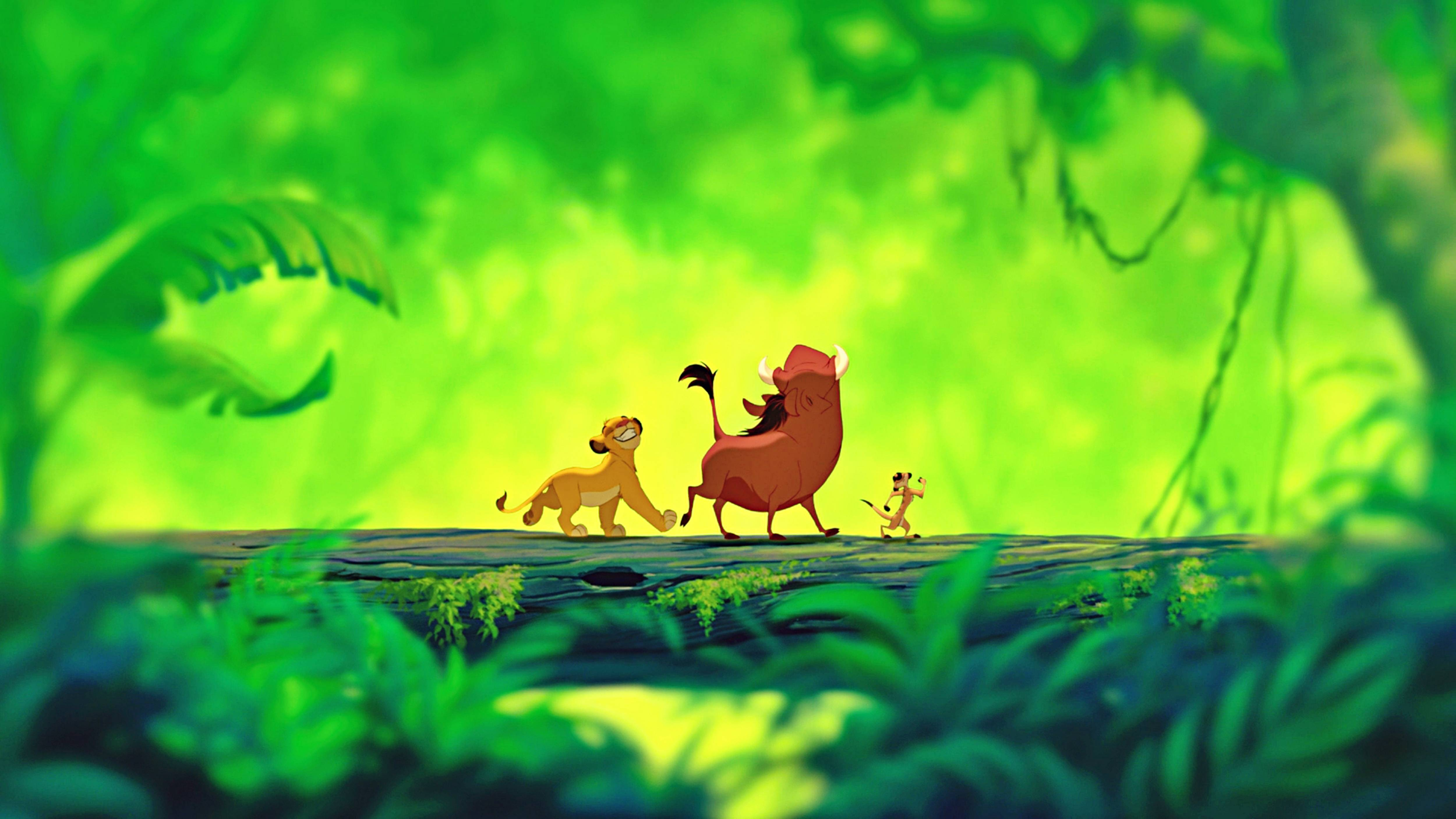 Timon Wallpapers Wallpaper Cave