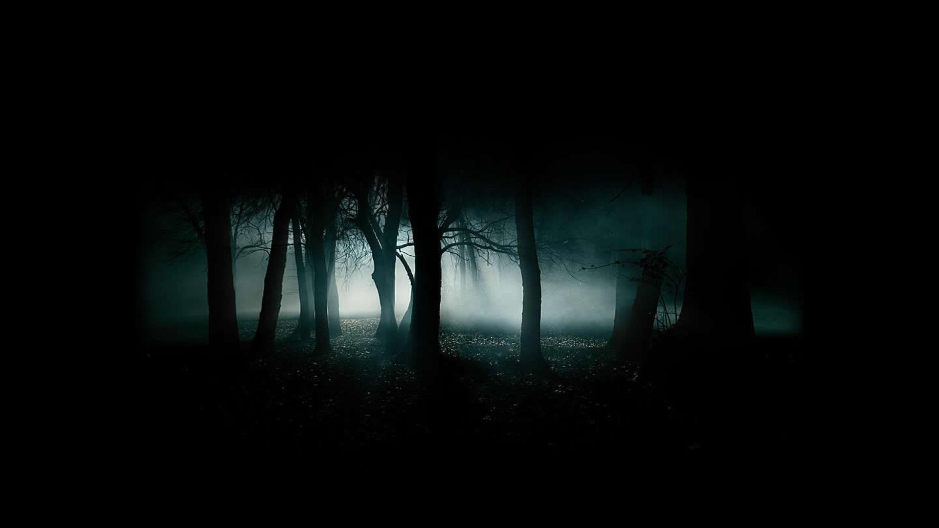 Download Scary Dark Forest Kostenlos Wallpaper 1920x1080 | HD .