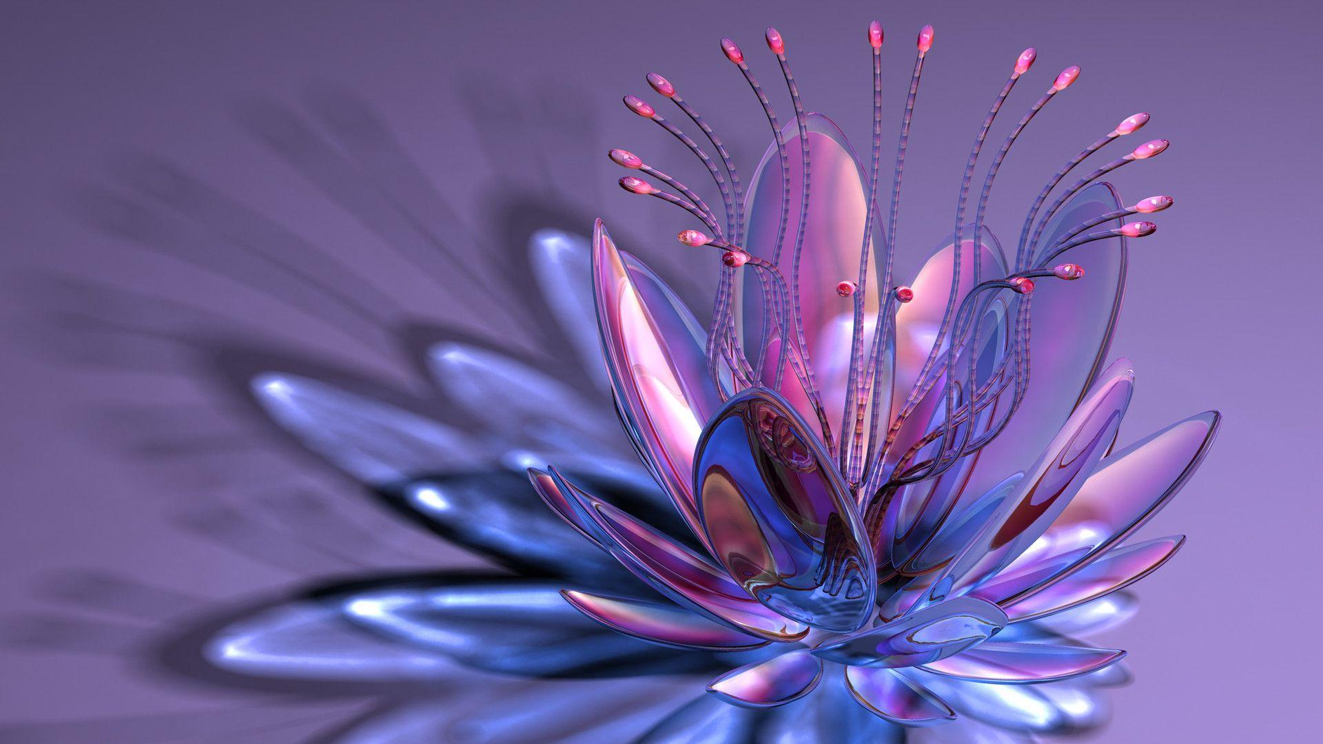 aquarius flower wallpaper hd -#main