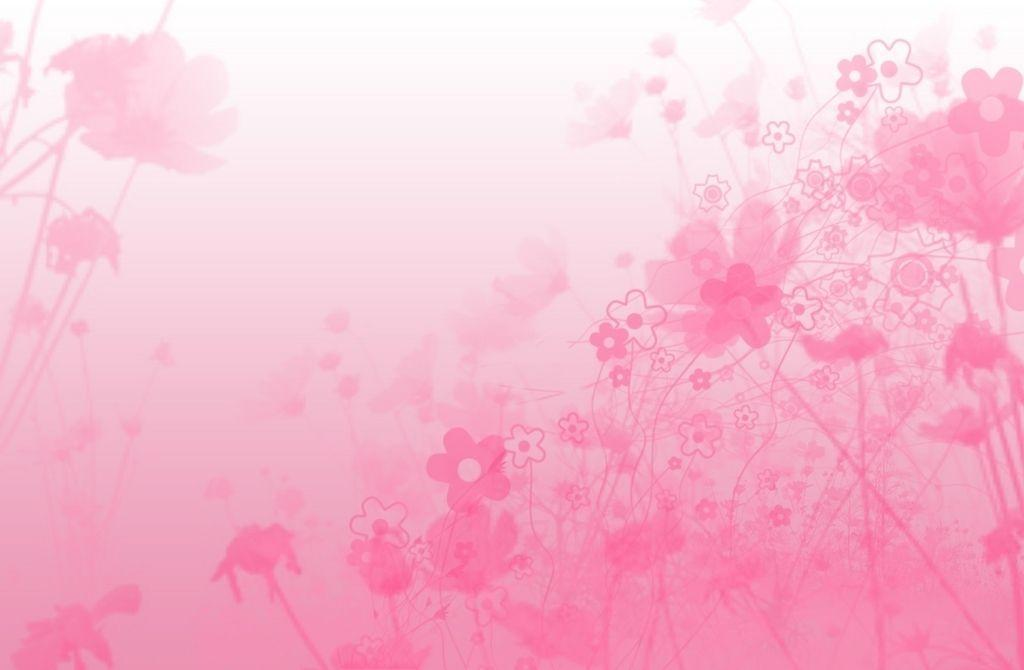 pink backgrounds wallpapers wallpaper cave