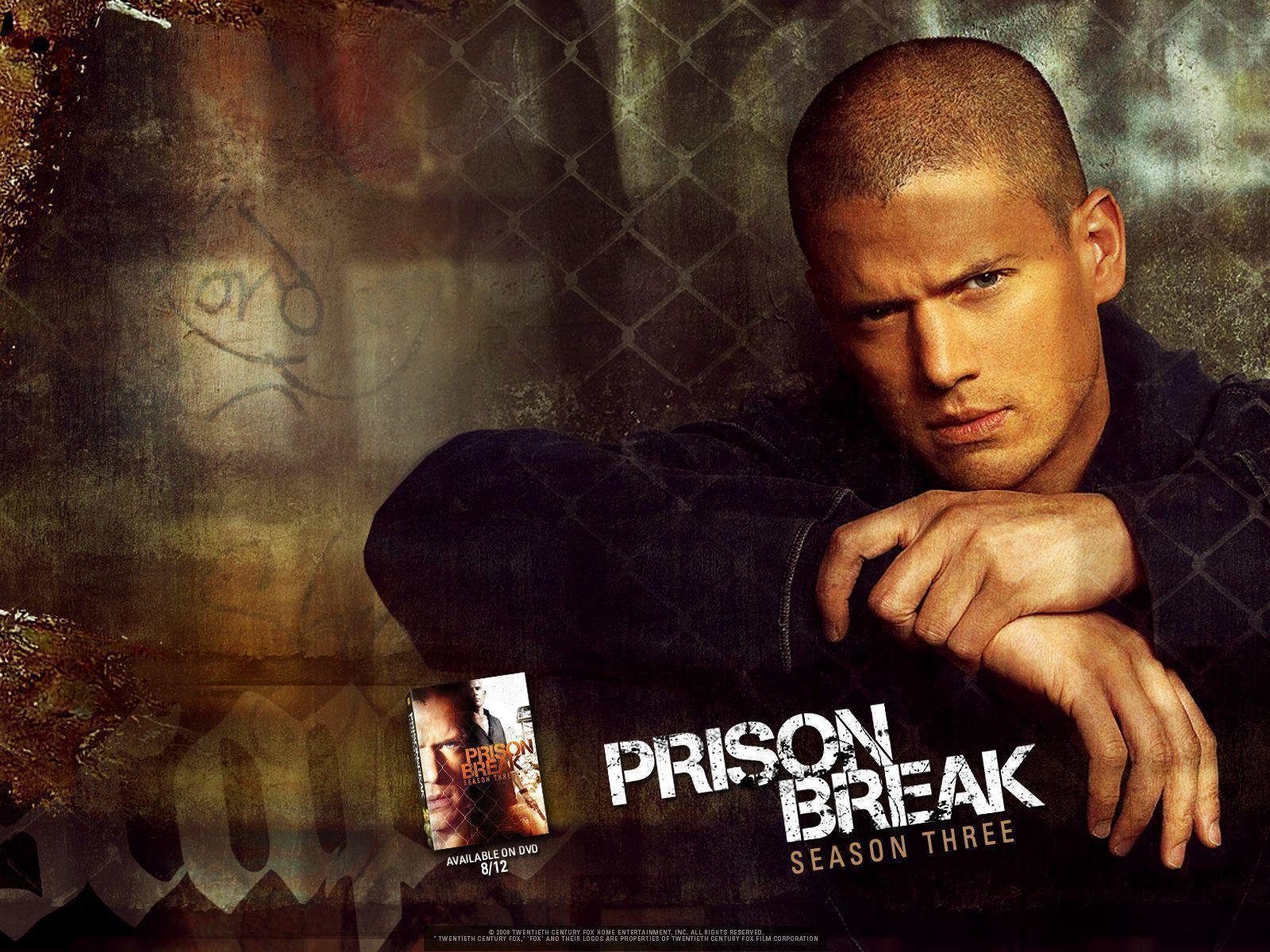 Torrent Download Prison Break Season 3 Episode 14