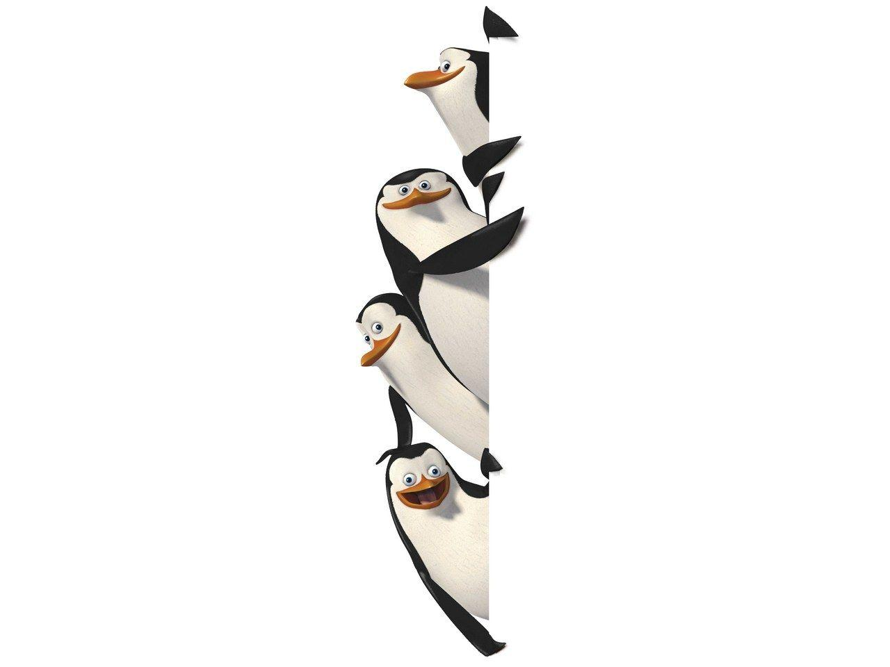 Best Wallpaper Movie Penguins Madagascar - 9rdNHeF  Best Photo Reference_182221.jpg