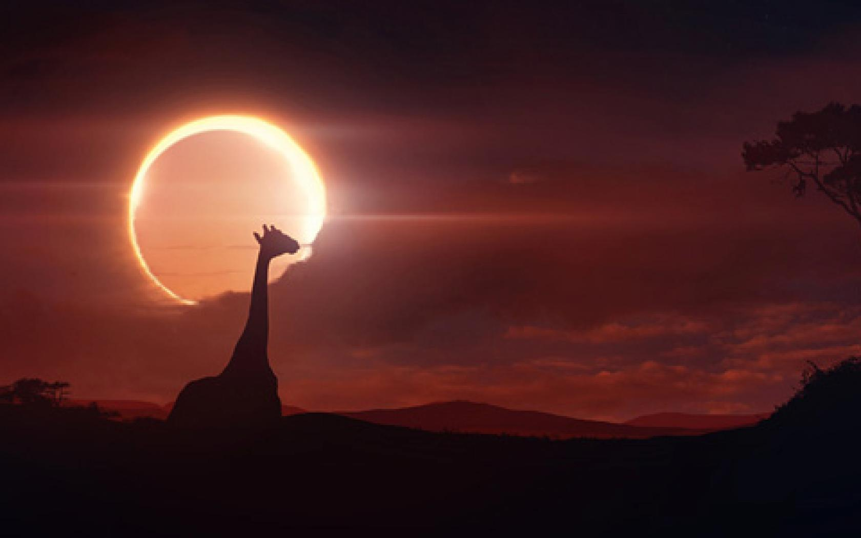 Solar Eclipse Widescreen HD Wallpapers