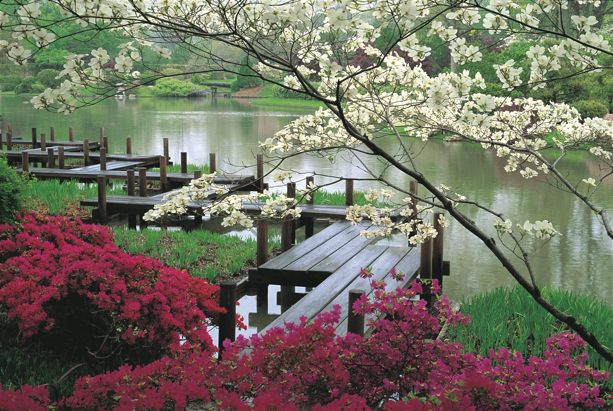 6 poster design photo mockups 57079 - Japanese Garden Wallpaper Japanese Garden Wallpaper Design Awesome 55300 Inspiration Designs