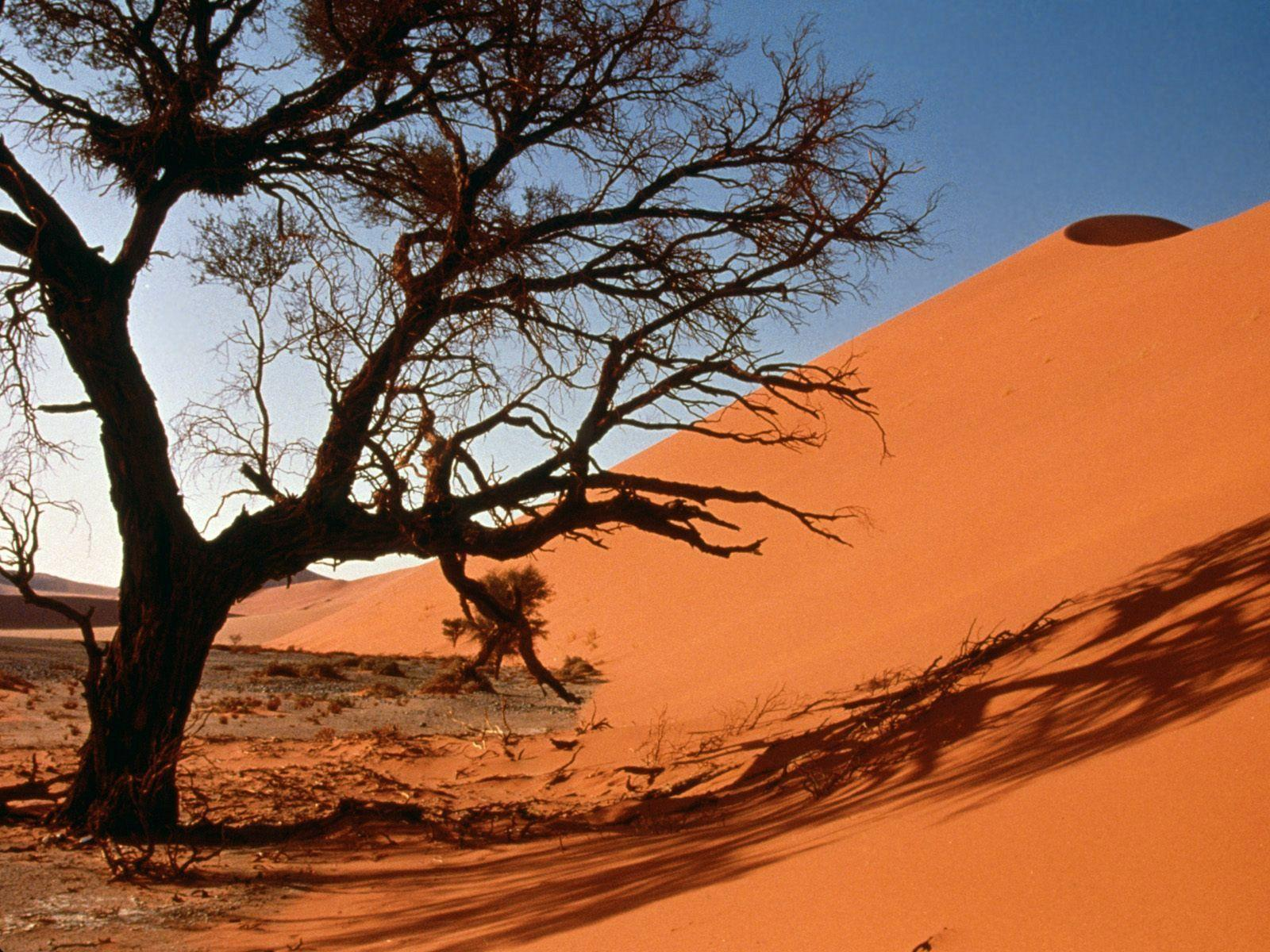 Sand Dunes, Central Africa