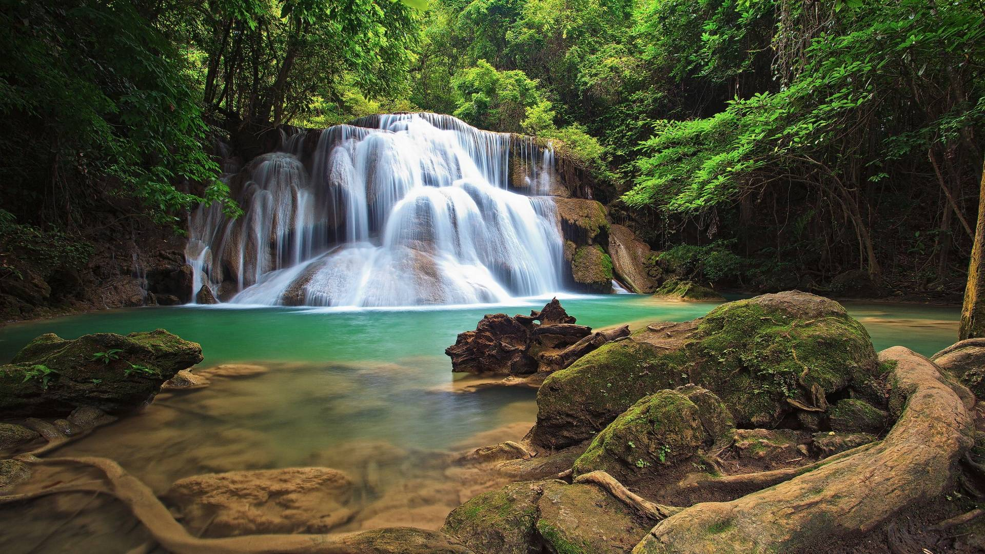 Forest Waterfall Wallpapers - Wallpaper Cave