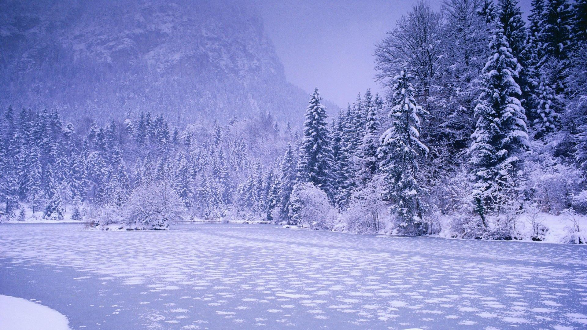 nature winter wallpapers wallpaper cave